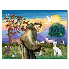 St. Francis' Devonshire Wall Art Poster