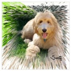Goldendoodle Wall Art Poster