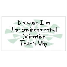 Because Environmental Scientist Wall Art Canvas Art