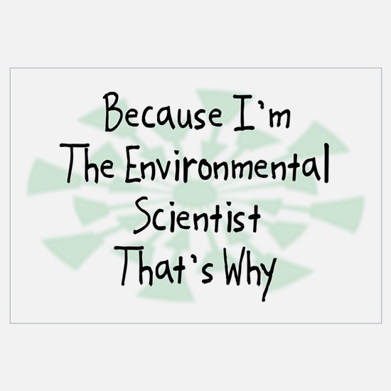 Because Environmental Scientist Wall Art