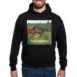 Pony hoodie (dark)