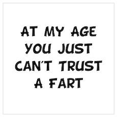 Trust Fart Wall Art Poster
