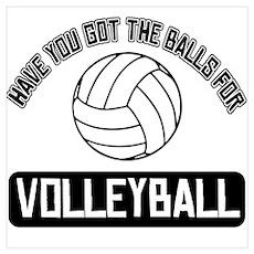 Got the balls for Volley ball Wall Art Poster