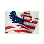 USA American Flag Freedom Dov Rectangle Magnet (10