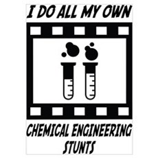 Chemical Engineering Stunts Wall Art Poster
