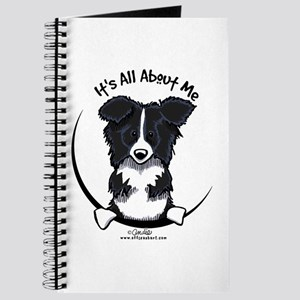 Border Collie IAAM Journal