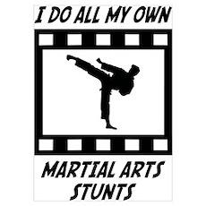 Martial Arts Stunts Wall Art Poster
