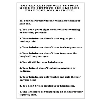 Top ten reasons why grooming Wall Art Poster