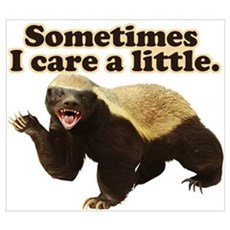 Honey Badger Does Care! Wall Art Poster