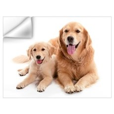Golden retriever buddies Wall Art Wall Decal