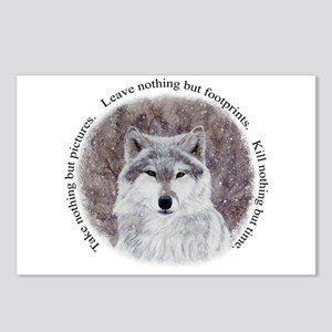 Timeless Wisdom Postcards (Package of 8)