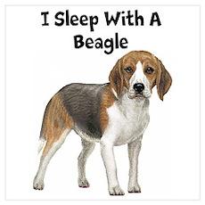 I Sleep With A Beagle Wall Art Poster