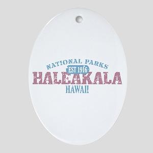 Haleakala National Park HI Ornament (Oval)