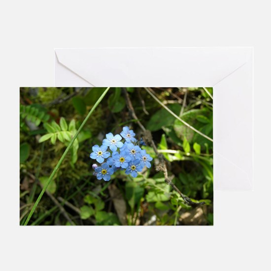 Forget-Me-Not #01 Greeting Card