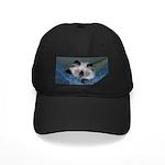 Blue-Eyed Himalayan Kitten Black Cap