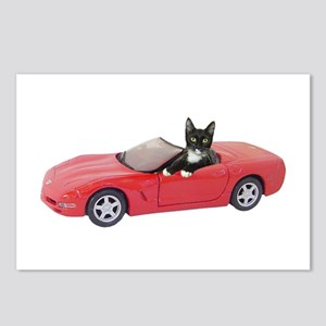 Cat in Red Car Postcards (Package of 8)