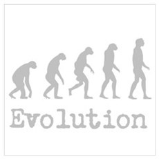 Darwin Evolution Design Wall Art Poster