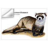 Ferret Wall Decals