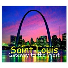 St. Louis Wall Art Framed Print