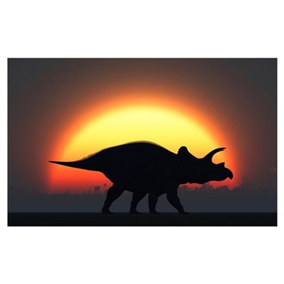 A silhouetted Triceratops strolling past a setting Poster