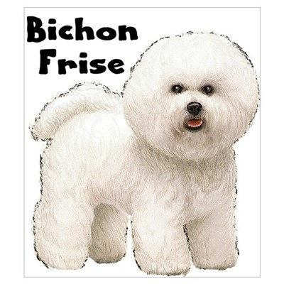 Bichon Frise Wall Art Framed Print
