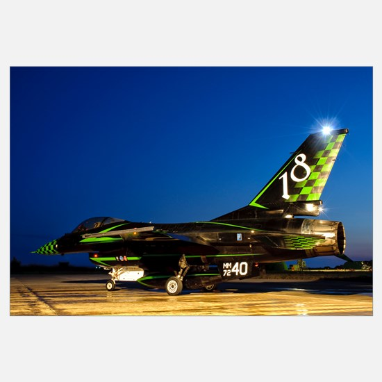 An Italian Air Force F-16ADF in a custom paint sch