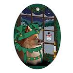 Pet Portrait Custom Art Oval Ornament