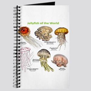 Jellyfish of the World Journal