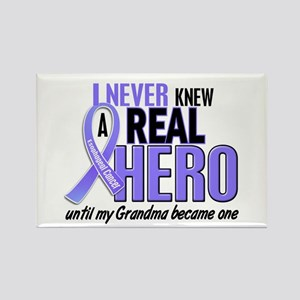 Never Knew a Hero Esophageal Cancer Rectangle Magn