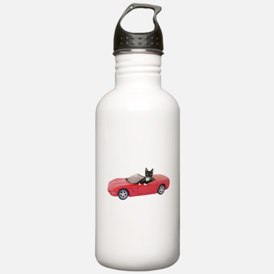 Cat in Red Car Water Bottle