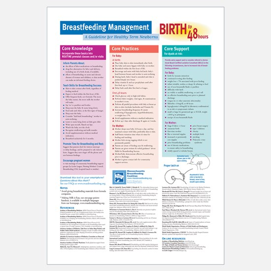 Flowchart: Birth to 48 hours, 11-17 poster