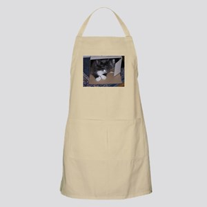 Cat in Box Apron