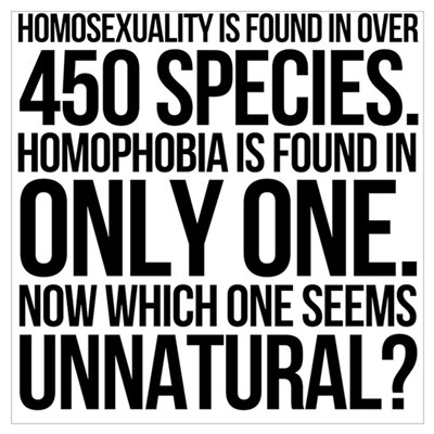 Homosexuality In 450 Species Wall Art Poster