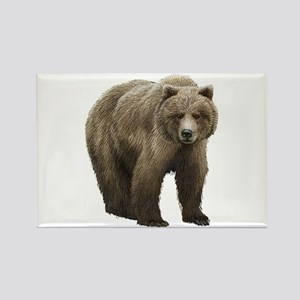 Bear Rectangle Magnet