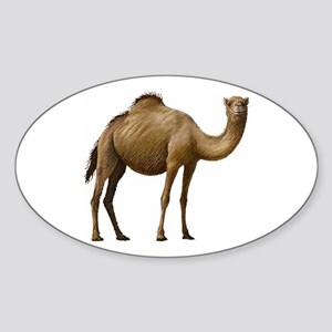 Camel Sticker (Oval)