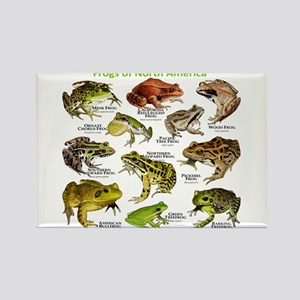 Frogs of North America Rectangle Magnet