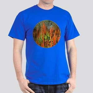 Orange Wolkberg aloe 1098 - Dark T-Shirt