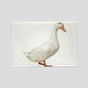 Duck Rectangle Magnet