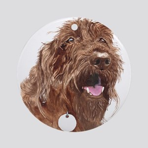 Chocolate Labradoodle3 Ornament (Round)
