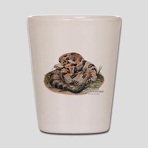 Timber or Canebrake Rattlesnake Shot Glass