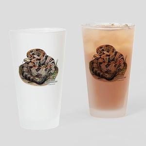 Timber or Canebrake Rattlesnake Drinking Glass