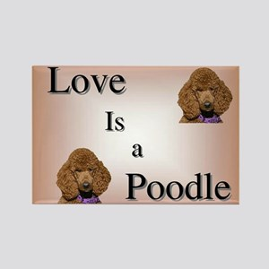 Love is a Poodle Rectangle Magnet