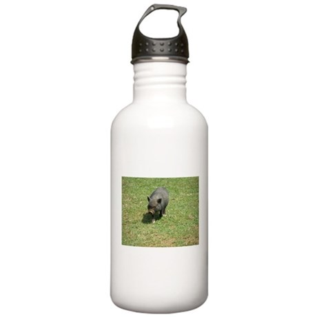 Pot Bellied Pig Stainless Water Bottle 1.0L