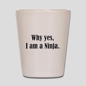 Why yes, I am a Ninja Shot Glass