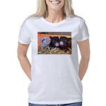 3 Little Pigs Women's Classic T-Shirt