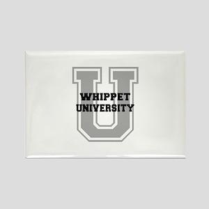 Whippet UNIVERSITY Rectangle Magnet