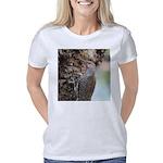 Northern Flicker Women's Classic T-Shirt