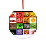 Rainbow Foods Ornament (Round)