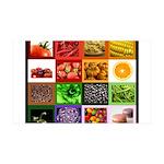 Rainbow Foods 38.5 x 24.5 Wall Peel