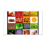 Rainbow Foods 22x14 Wall Peel